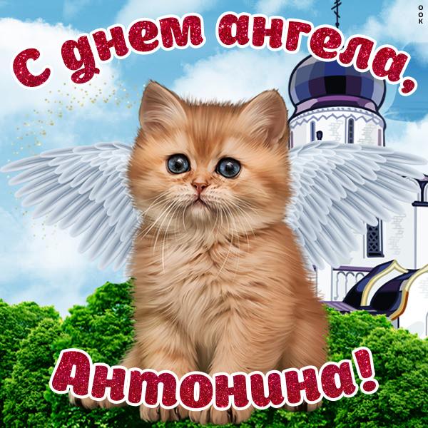 Картинка красивая картинка с днём ангела антонине