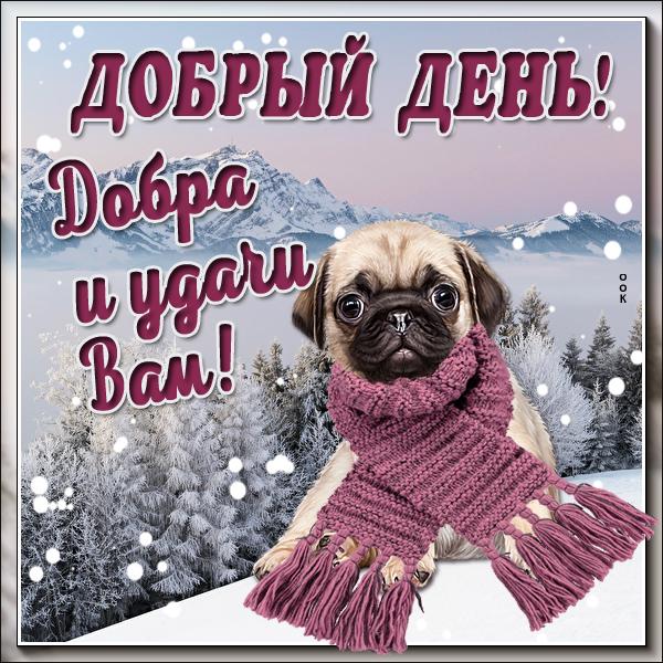 Картинка зимняя открытка добрый день