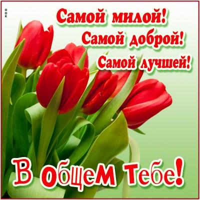 Открытка для тебя нежнейшие тюльпаны