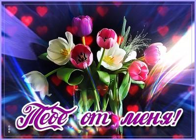 Картинка картинка букет тюльпанов