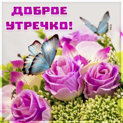 Картинка картинка доброе утро с бабочкой