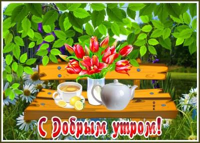 Открытка картинка доброе утро с красными цветами