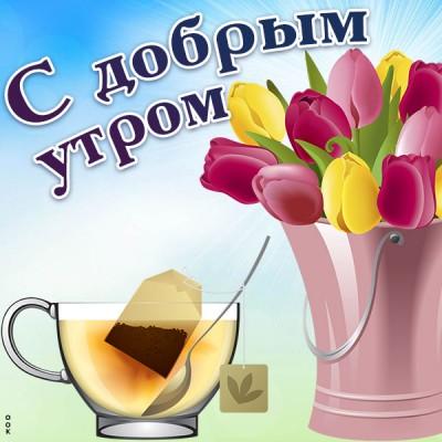 Картинка картинка доброе утро с тюльпанами