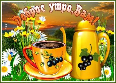 Картинка картинка доброго утра на природе