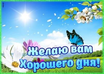 Картинка картинка хорошего дня с бабочкой