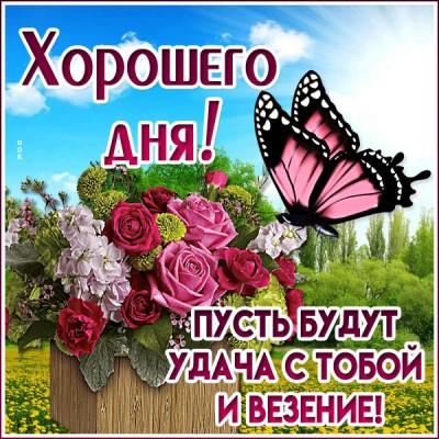 Открытка картинка хорошего дня с бабочкой