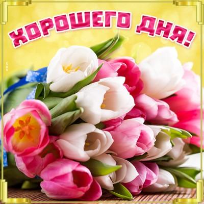 Картинка картинка хорошего дня с тюльпанами