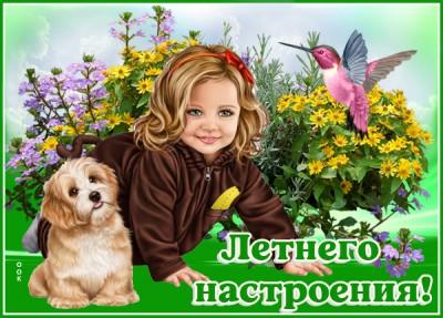 Картинка картинка летнего настроения с собакой