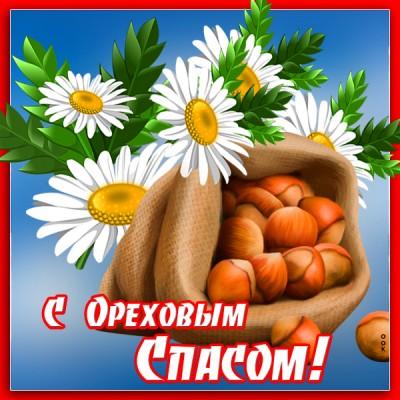 Открытка картинка поздравление на ореховый спас