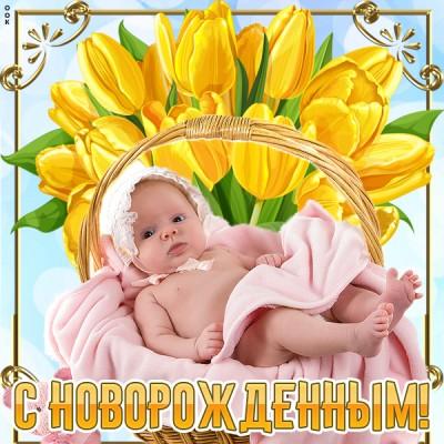 Открытка картинка поздравления с новорожденным