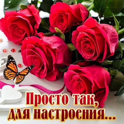 Картинка картинка прекрасного настроения с цветами