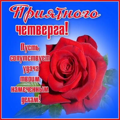 Картинка картинка приятного четверга с розой