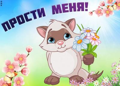 Картинка картинка прости с котиком