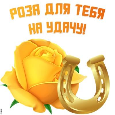 Картинка картинка роза на удачу