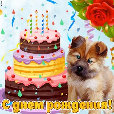 Картинка картинка с днем рождения ребенку с собакой