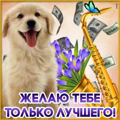 Открытка картинка с пожеланиями с собачкой