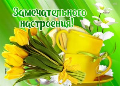 Картинка картинка с тюльпанами для настроения