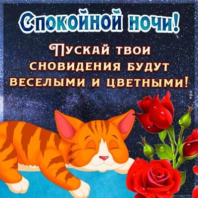 Картинка картинка спокойной ночи с кошечкой