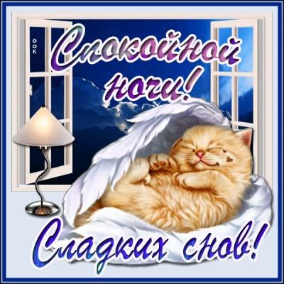 Открытка картинка спокойной ночи с котенком