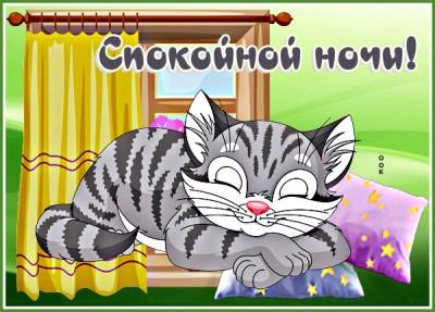 Картинка картинка спокойной ночи с котом