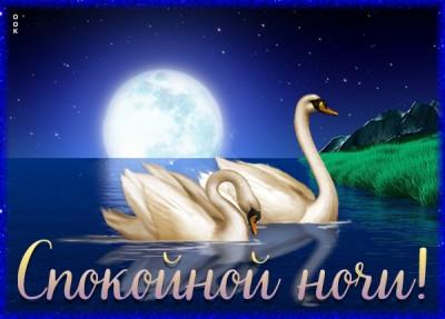 Открытка картинка спокойной ночи с лебедями