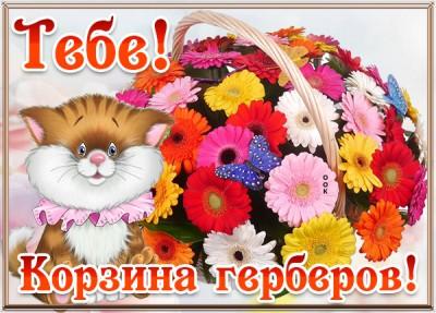 Картинка картинка тебе корзина цветов с герберами