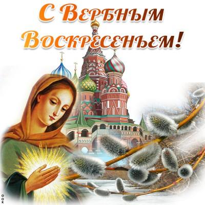 Открытка картинка в вербный праздник желаю удачи сполна