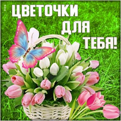 Картинка картинка все цветы для тебя