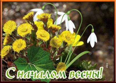 Открытка картинка всех друзей с первым днём весны