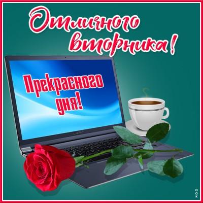 Картинка картинка вторник с розой