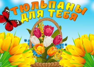 Открытка картинка яркие тюльпаны