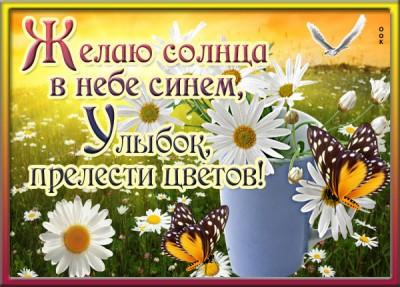 Открытка картинка желаю солнца в небе синем, улыбок, прелести цветов!