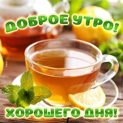 Картинка красивая картинка доброе утро с чаем с мятой