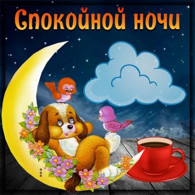 Картинка красивая картинка спокойной ночи