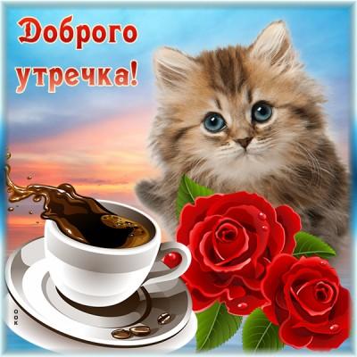 Открытка красивая открытка с добрым утром