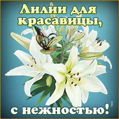 Открытка лилии для красавицы