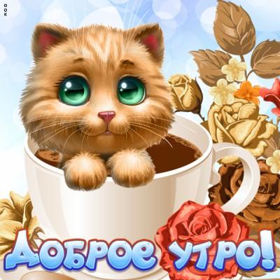 Картинка милая картинка доброе утро с котенком