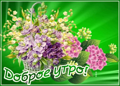 Открытка милая открытка с добрым утром с цветами