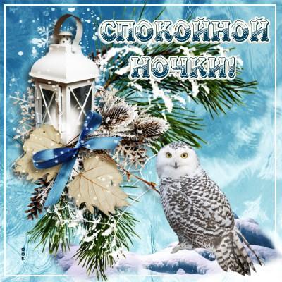 Картинка милая зимняя картинка спокойной ночи