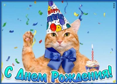 Картинка оригинальная картинка с днем рождения с котом