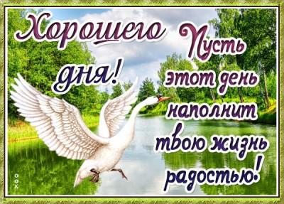 Картинка открытка хорошего дня с природой