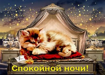 Картинка открытка спокойной ночи с кошкой