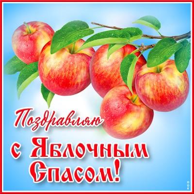 Открытка праздничная картинка яблочный спас