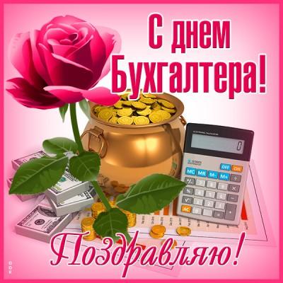 Картинка прекрасная картинка день бухгалтера в россии