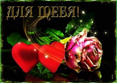Открытка прекрасная картинка с розой