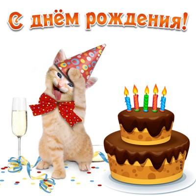 Открытка прикольная картинка с днем рождения