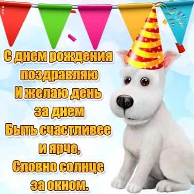 Картинка прикольная картинка с днем рождения с пожеланиями