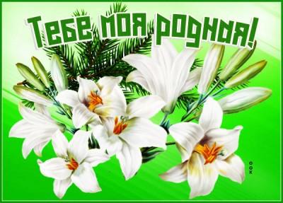 Открытка прикольная картинка с цветами