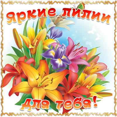 Картинка яркие лилии для тебя