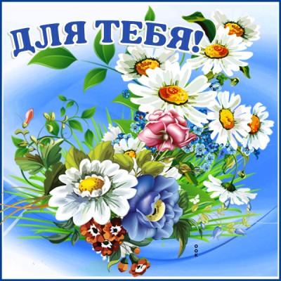 Картинка живая картинка с цветами